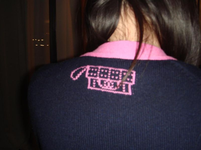 Chanel Cardigan pink blue back
